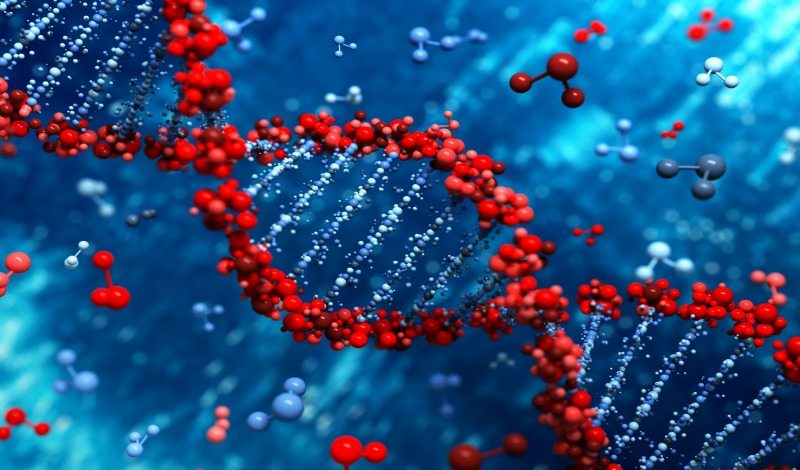 Your DNA Can Determine… Addiction?