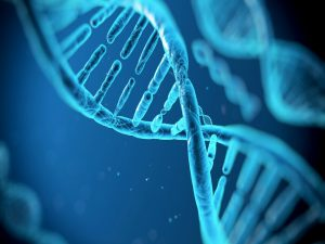 Your DNA Can Determine… Addiction? dna 300x225